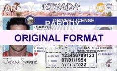 scannable nevada fake id nevada, fakeid nevada, nevada fake license