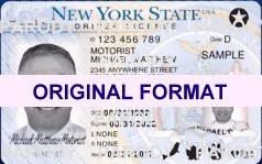 fake id new york