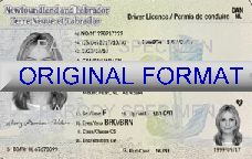Newfoundland Fake Driver License scannable fake id fake identity fake driver license newfoundland